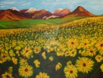 Field of Daisies by soarts