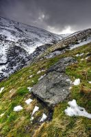 North Facing South by taffmeister