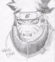 Naruto Kyuubi by mirror-of-madness