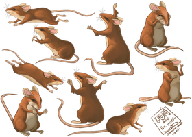 Mouse Character Sheet by WilsonWJr