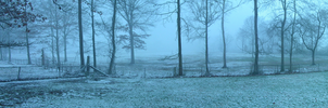 Snow Panorama by IDR-DoMiNo