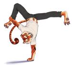 Breakdancetiger Commissionex by Firequill