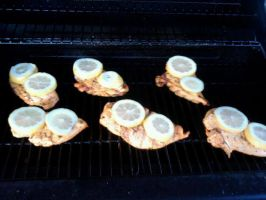 Grilled Lemon herb chicken by AmberLynn26