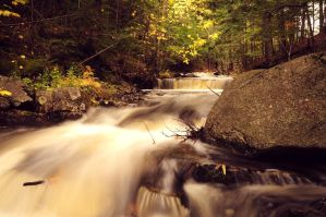 Autum falls by wormwood58