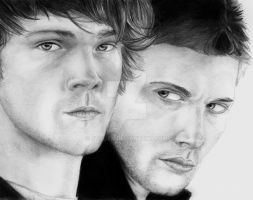 Supernatural- Brothers by stalien