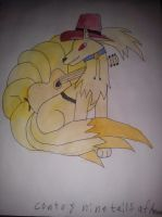 Contry ninetails by daylover1313
