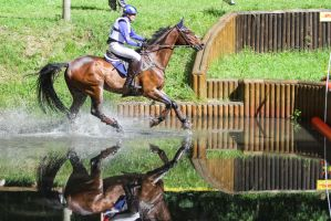 DHL Water Obstacle Series Bay Gelding Pt 5 by LuDa-Stock