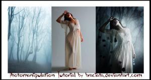Free Photomanipulation Tutorial 001 by FP-Digital-Art