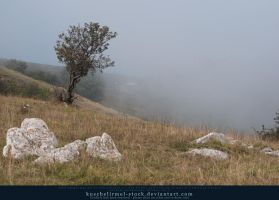 Fog Rolling In 03 by kuschelirmel-stock