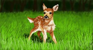 Fawn by Indybreeze