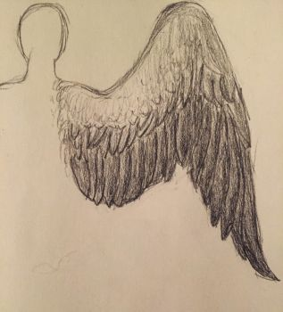 wing doodle by auroraxaustralis