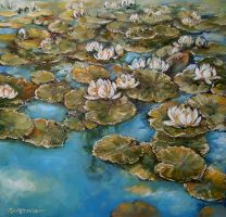 Water Lilies .. by radina