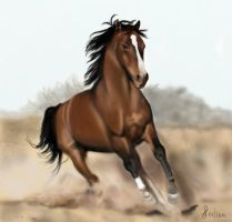 Running horse by Saryetta86