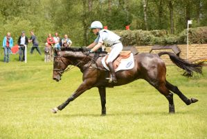 Eventing Stock - Full Speed Gallop 02 by LuDa-Stock