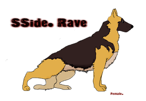 SSide. Rave by South-Sidee