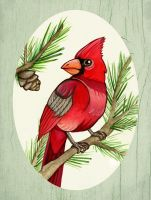 Male Cardinal - Winter by MonicaMcClain