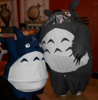 Totoro Costumes by MomIsMean