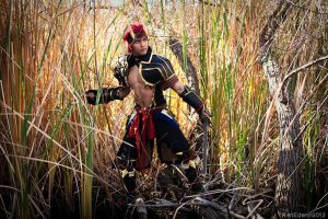 Monster Hunter Tigrex Diablos Armor by JFamily
