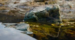 Swimming rock by forgottenson1