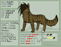 Arashi Reference Sheet by Shrew-WiFi