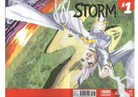 Storm Cover 2014 by RadPencils