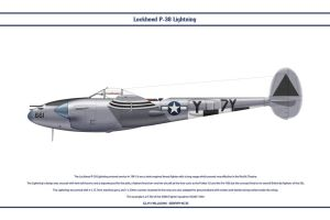 P-38J USAAF 428th FS 1 by WS-Clave