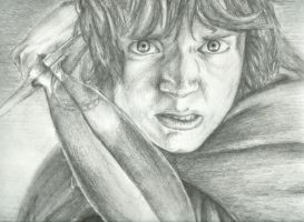 The Fall of Frodo by Sastrei