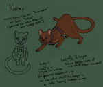 Vesper Facility character design contest- Karay by Animus-Panthera