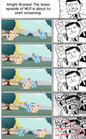 How Bronies React to Pony Interaction by Camsy34