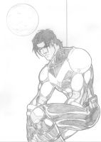 Nightwing by Taj-P
