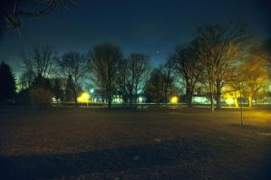 Night Trees by RavenGraphics