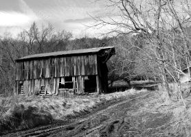 Rural History in Black and White 02 by Thy-Darkest-Hour