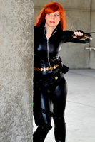 Call in the Black Widow by GothamBeat