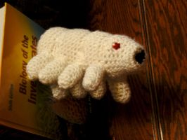 Water Bear Amigurumi by Banvivirie