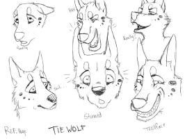 Ref. Sheet - Face Angles by TieWolf
