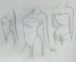 Female Torso Tutorial by venominon