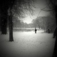 Snow walk II by lostknightkg
