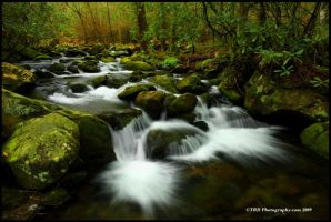 Waters of Spring, GSMNP by TRBPhotographyLLC