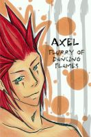 VIII...Axel by HolyDemon