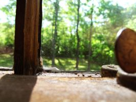 Windowsill by looking-for-hope