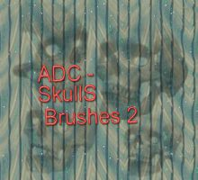 ADC -SkullS - Brushes 2 by 4sundance