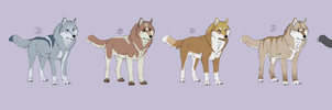 Wolf clones for sale by DakotaW-Wolf