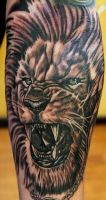 Lion-O by Sean Ambrose at Arrows and Embers by seanspoison