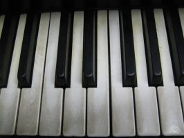 Stock Steinway Keys 12 by darlingstock