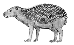 redesigning of TFIW 5mya species SA rattleback by Dragontunders