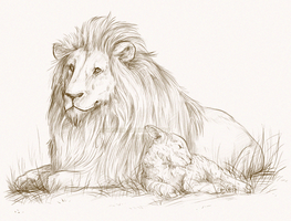 The Lion and the Lamb by iPhysik