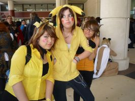 Pokemon: PICHPIKARAI-lutionxD by xXSnowFrostXx