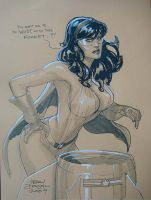 Phantom Lady Toronto 2009 by TerryDodson