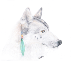 Native Wolf Sketch by Dragonite1