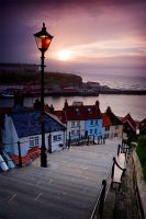 Whitby IX by cardinal